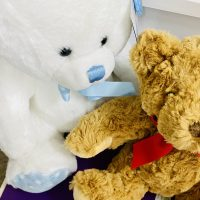 Soft Toys from £9.50.